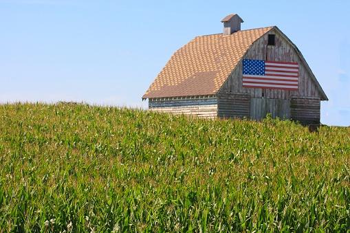 Internet Access Rural America
